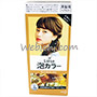 Kao LIESE Bubble Hair Color French Beige