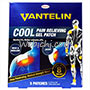 Kowa VANTELIN Cool Pain Relieving Gel Patch(regular)